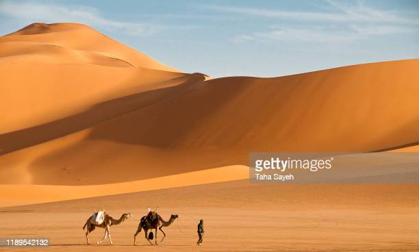 libyan desert - tuareg tribe stock pictures, royalty-free photos & images