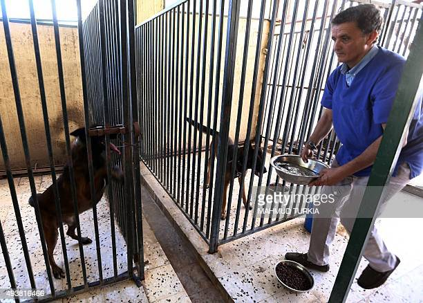 Libyan vet Jalal Kaal feeds a dog he rescued in Tripoli at his clinic in the Libyan capital on October 19 2015 When evacuated foreigners left their...