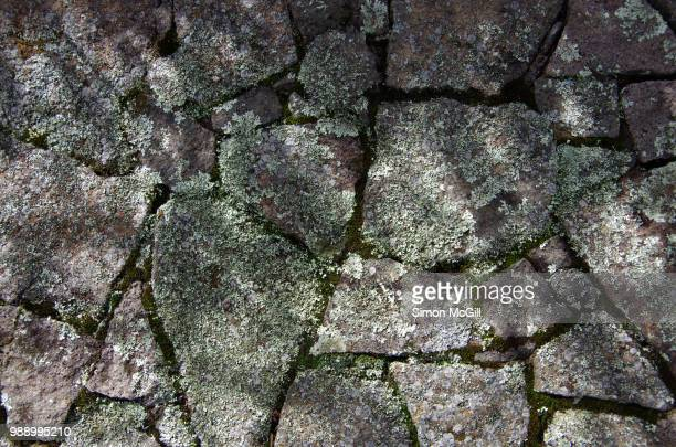 lichen and moss on the top of a stone wall - stone wall stock pictures, royalty-free photos & images
