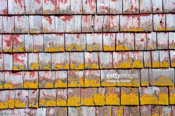 Lichen covered shingles of fishing hut in the fishing village of Peggy's Cove near Halifax Nova Scotia Canada