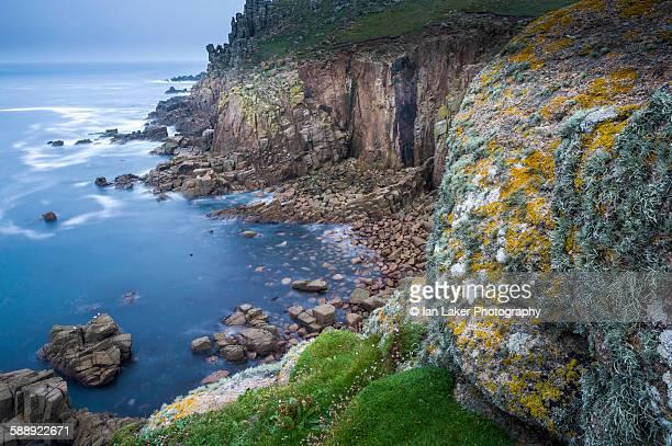 Lichen on cliffs at Lands End, Cornwall, UK