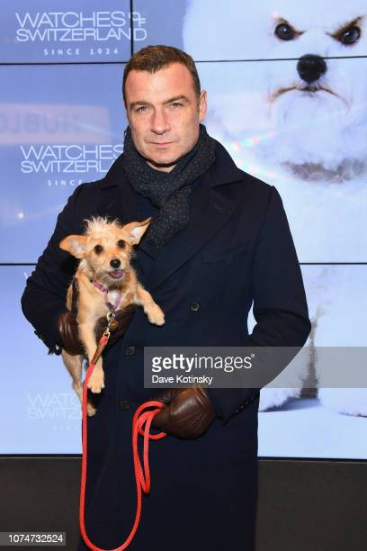 Liev Schreiber attends the launch party at Watches of Switzerland on November 29 2018 in New York City