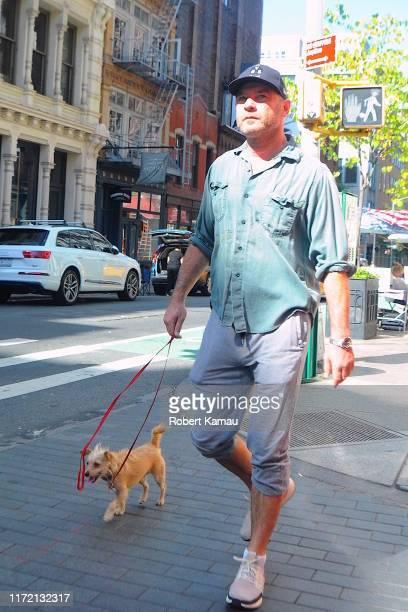 Liev Schreiber seen out dog walking in Manhattan on September 29 2019 in New York City