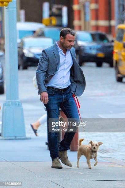 Liev Schreiber seen walking his dog in Manhattan on September 18 2019 in New York City