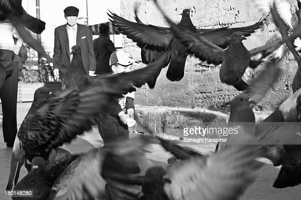 Life, birds, bird, istanbul, turkey, turkish, türkiye, child, cocuk, dede, old, man, black, white, photos, flickr, photography, fotografie, street,...