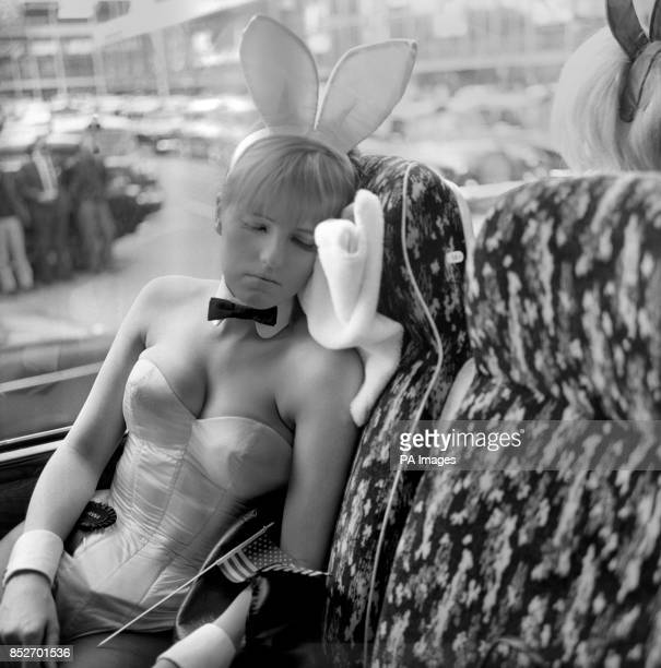 Life can be a very tiring one for Bunnies so 18yearold ANNA SCHOLES of Kentish town took advantage of the opportunity for a rest while waiting in the...