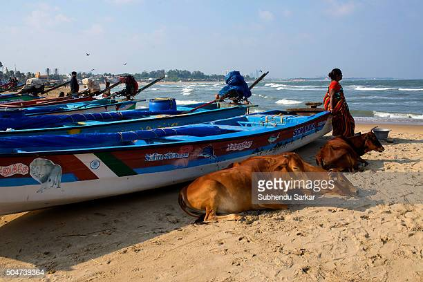 Life gets back to normalcy after the heavy floods in Chennai as people enjoy themselves on Covelong Beach Covelong Beach is one of the most...