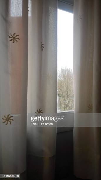 Life in a house, curtain and window