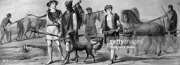 market farmer fisherman urban wagon historical illustration