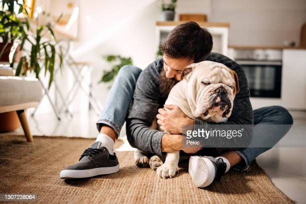 life is good with a faithful friend by your side - english bulldog stock pictures, royalty-free photos & images
