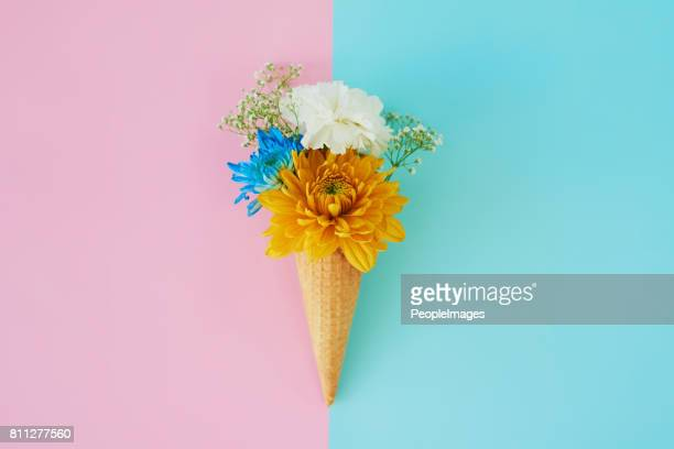life is perfect, just add flowers! - multi colored background stock pictures, royalty-free photos & images