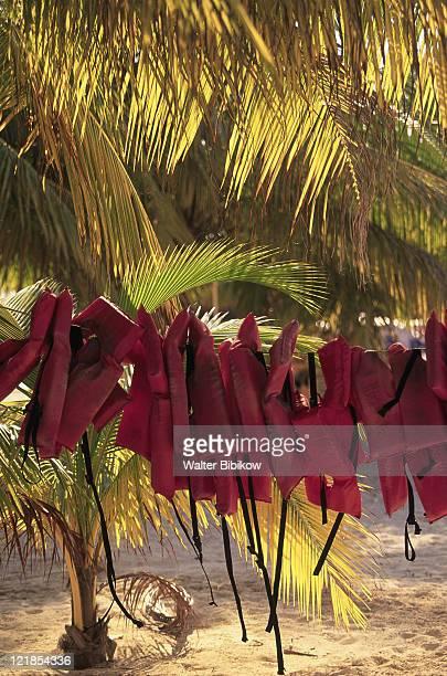 life jackets, isla mujeres, mexico - mujeres fotos stockfoto's en -beelden