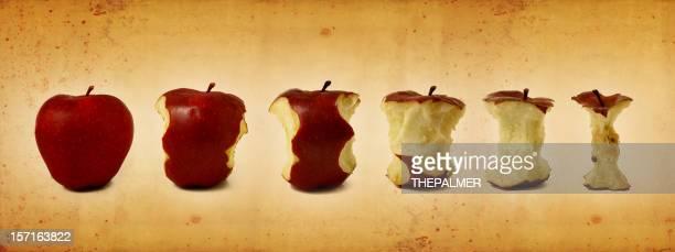 life of an apple