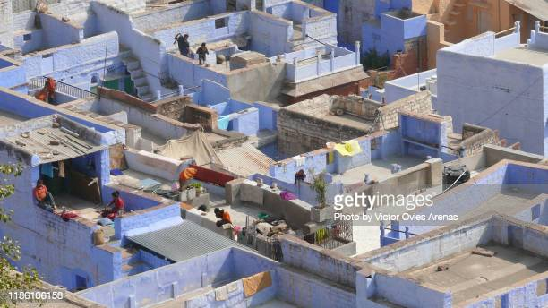 life on the rooftops of the brahmin blue old city in jodhpur, rajasthan, india - victor ovies fotografías e imágenes de stock