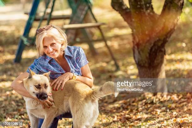 leben mit hund - aktiver lebensstil stock-fotos und bilder