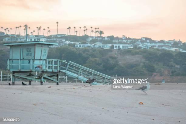 lifeguard tower against beach coastline - strandwächterhaus stock-fotos und bilder