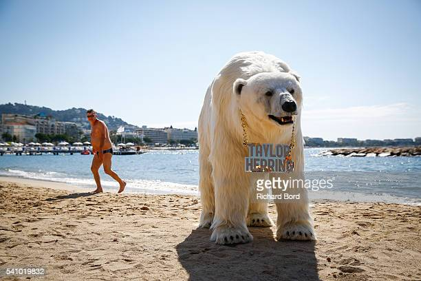 A lifelike mechanical Polar Bear controlled by puppeteers for London creative agency Taylor Herring appears on the Cannes beach during The Cannes...