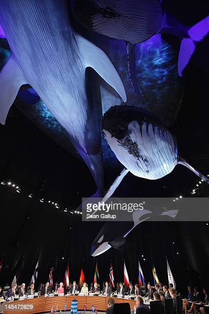 Lifescale models of whales hang over leaders of Baltic Sea nations at the opening of the 2012 Council of Baltic Sea States Summit at the Ozeaneum...
