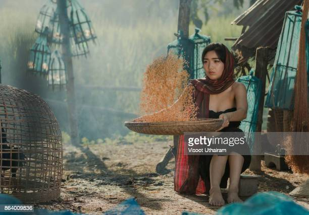 Lifestyle of rural Asian women in the field countryside thailand.