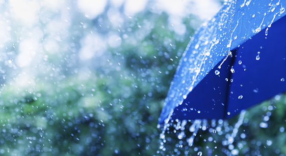 Lifestyle scene of rainy weather. Blue umbrella under rainfall. Banner format. 1166159013