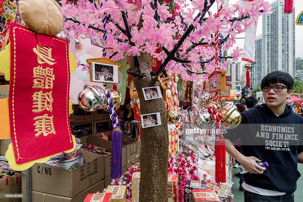Lifestyle-Asia-offbeat-Lunar, FEATURE by Beh Lih Yi A man stands next to a tree blossom replica where customers have their pictures displayed at a Chinese New Year fair in Hong Kong on February 5, 2013. A stock market slide, possible conflict between Japan and China and more Gangnam-styled success for South Korean singer Psy will shape the incoming Year of the Snake, say Asian soothsayers. AFP PHOTO / Philippe Lopez