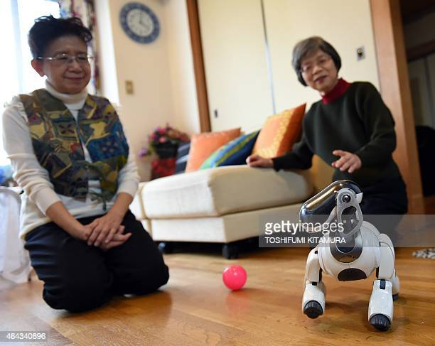 LifestyleelectronicsJapanrobotSony by Miwa Suzuki Hideko Mori and her sister Yasuko Mori watch their robot pet AIBO playing after she asked 'AFun'...