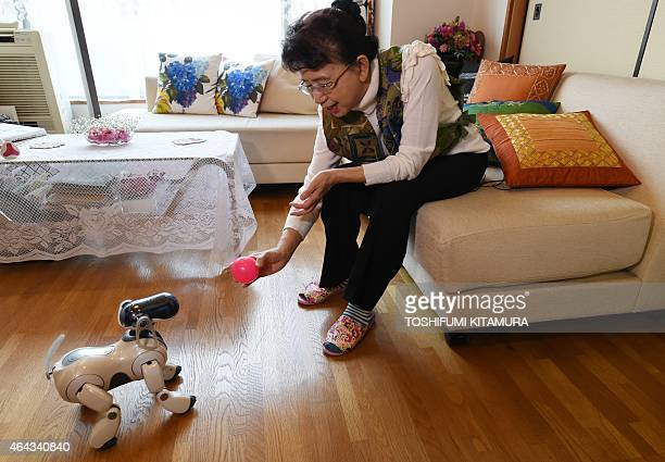 LifestyleelectronicsJapanrobotSony by Miwa Suzuki Hideko Mori plays with her robot pet AIBO after she asked 'AFun' company to repair the AIBO at her...