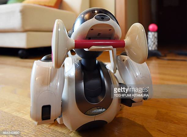 LifestyleelectronicsJapanrobotSony by Miwa Suzuki Hideko Mori's robot pet AIBO plays with AIBone after she asked 'AFun' company to repair the AIBO at...