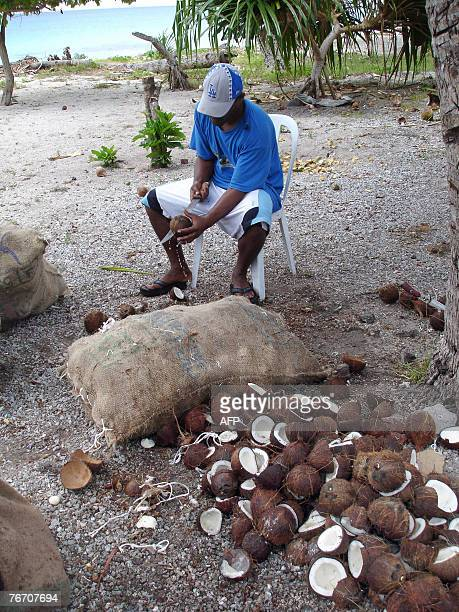 LifestyleenvironmentenergyPacificbiofuelcoconutFEATURE by David Brooks This picture taken in March 2006 shows an islander chopping up coconuts...