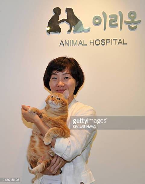 LifestyleSKoreaanimalsFEATURE by Nam YouSun This photo taken on June 12 2012 shows Irion head Park SoYeon embracing a cat at her luxury...