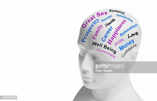 lifestyle/wellbeing phrenology head - exceed and excel stock pictures, royalty-free photos & images