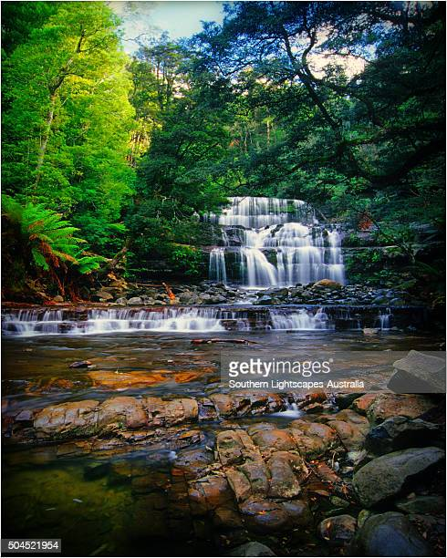 liffey falls, a beautiful and scenic area in northern tasmania, which is protected rainforest and part of the world heritage forests. - international landmark stock pictures, royalty-free photos & images