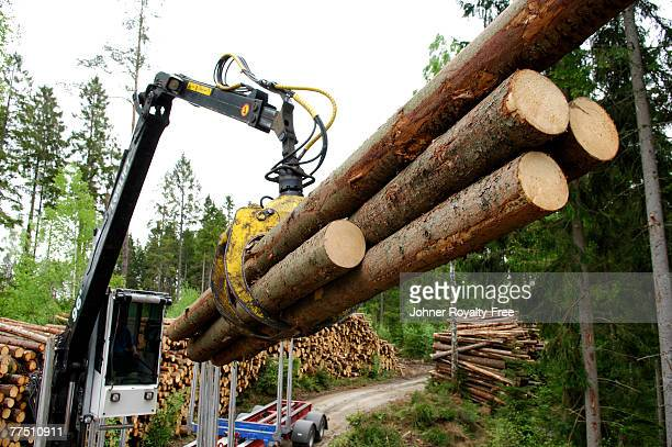 A lifting crane with timber.
