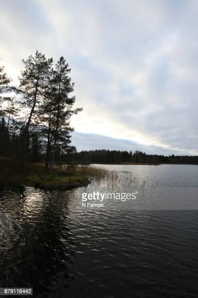 Light and dark on the lake