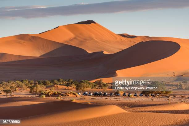 light and shade on sand dune in namib desert, namibia, africa - namib naukluft national park stock pictures, royalty-free photos & images