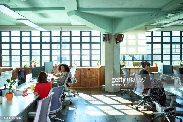 light and spacious modern office with women working at desks - wide shot stock pictures, royalty-free photos & images
