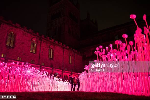 A light art installation entitled 'Entre Les Rangs' is pictured at the Cathedral Cloister as part of Lumiere Durham light festival in Durham northern...