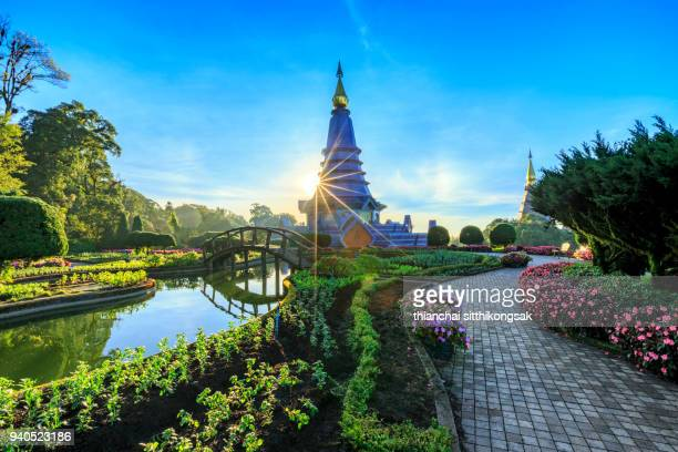 light beam with monument in flower park - provincia di chiang mai foto e immagini stock