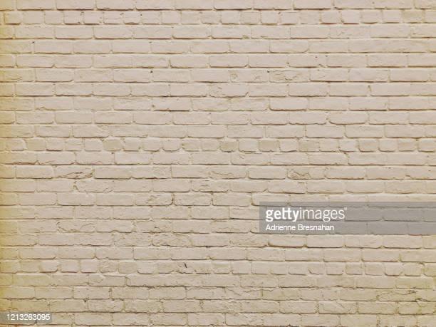 light beige painted brick wall - crèmekleurig stockfoto's en -beelden