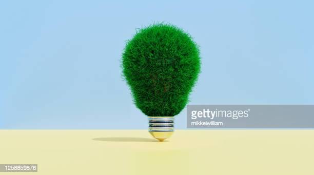 gloeilamp die in gras wordt behandeld toont concept het denken groen - milieukwesties stockfoto's en -beelden