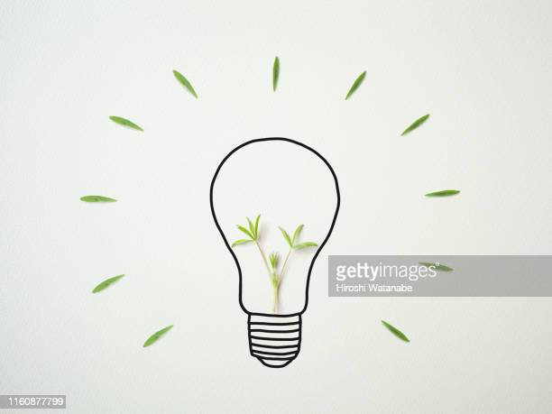 light bulb drawn on drawing paper with plants - ecosystem stock pictures, royalty-free photos & images
