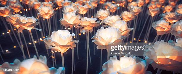 LED light bulb rose flower
