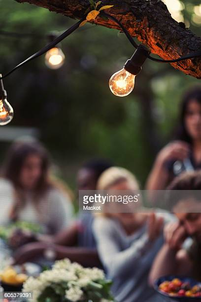 Light bulbs on branch with friends enjoying dinner party at yard