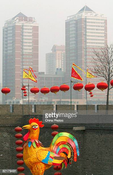 A light display of a rooster is seen near the Xian Old City Wall on February 10 2005 in Xian of Shaanxi Province China People around China are...