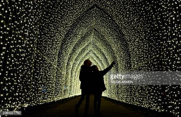 TOPSHOT Light displays are pictured during a photocall at Kew Gardens in south west London on November 21 during an event to promote the launch of...