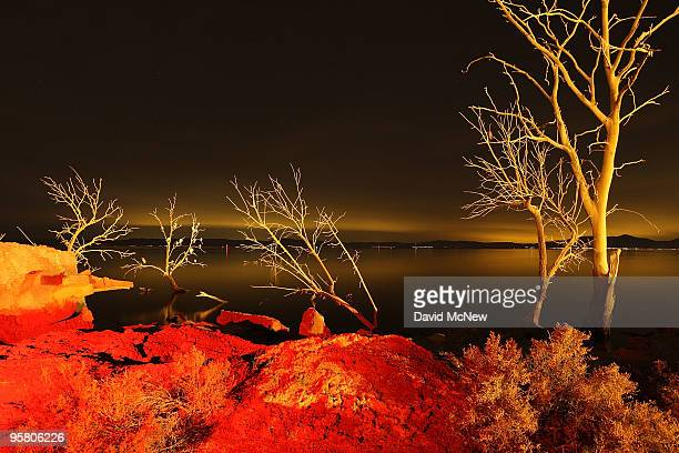 Light from a geothermal energy plant along the southern San Andreas Fault illuminates dead trees flooded by the rising waters from the Salton Sea on...