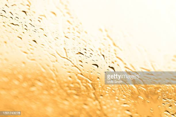 light golden water droplets on the car windscreen at sunset - world water day stock pictures, royalty-free photos & images