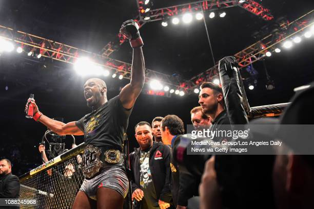 Light Heavyweight Jon Jones celebrates after knocking out Alexander Gustafsson to win the Light heavyweight championship during UFC 232 at the Forum...