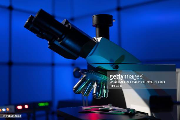 light microscope - laboratory stock pictures, royalty-free photos & images
