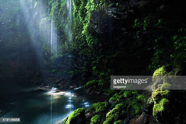 light of ravine - isogawyi stock pictures, royalty-free photos & images